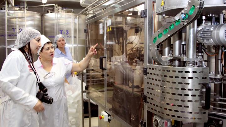 Молочный завод «Абсолют» из Боровского наказали за неправильное хранение молока