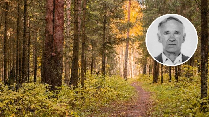 Сел на внедорожник и уехал в лес: в Ярославской области ищут очень старенького дедушку