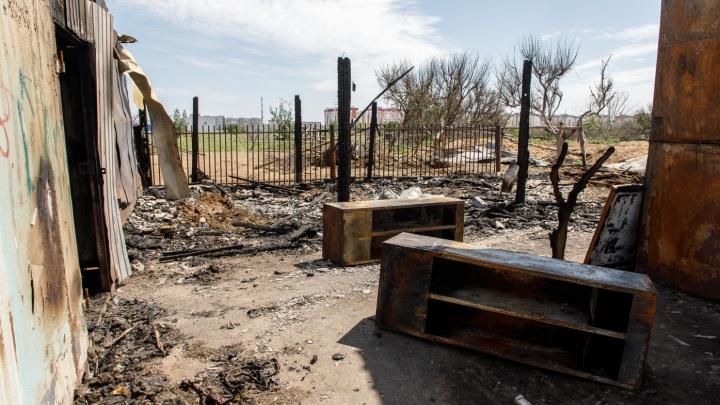 «Сын конюха курил со своим братом»: страшный пожар на конюшне Волжского разгорелся из-за окурка