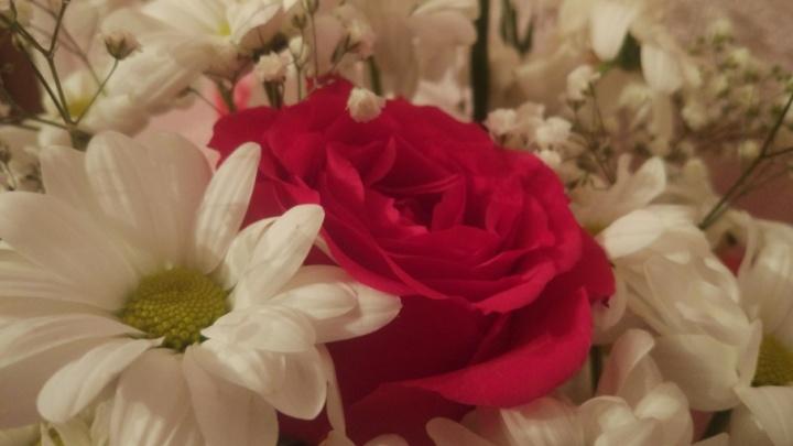 Уфимец украл 45 роз и подарил первой встречной