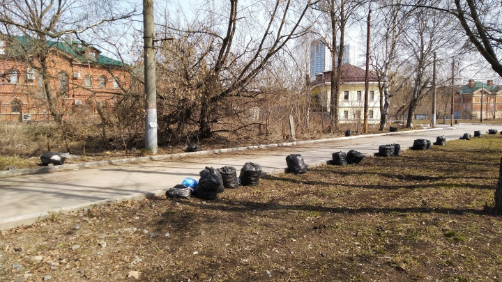 Пятнадцать мешков с мусором на границе ответственности разных чиновников