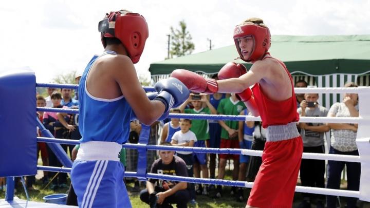 В Сафакулевском районе прошли межрайонные соревнования по боксу