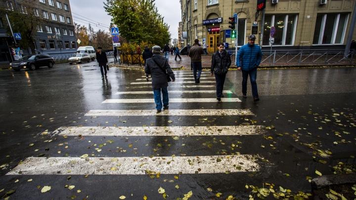 Автоинспекторы объявили облаву на пешеходов на дорогах Новосибирска