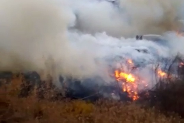 Пожар в овраге не могут потушить четвертые сутки