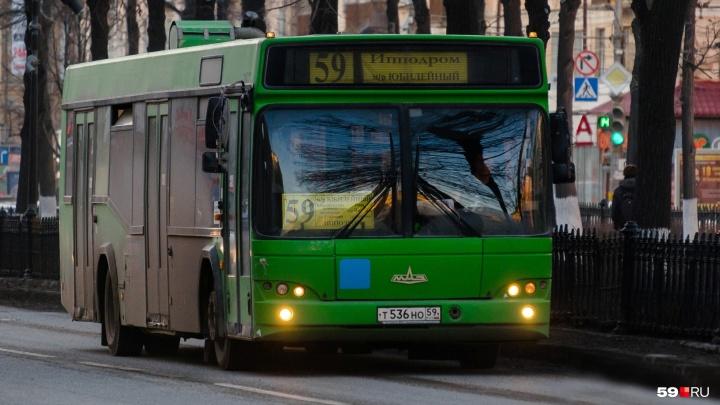 В выходные часть автобусов в центре Перми поменяют маршрут