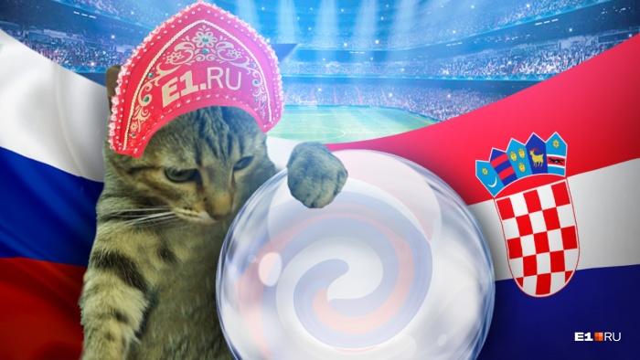 Редакционная кошка Сяма предсказала исход матча