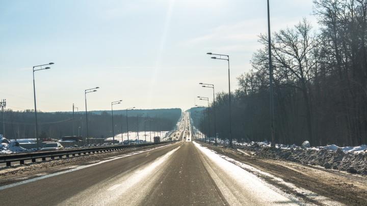 Проезжая часть в лесу: публикуем схему размещения новой дороги у Волжского шоссе