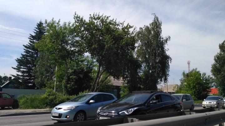 Новосибирцы встали в глухую пробку на Бердском шоссе