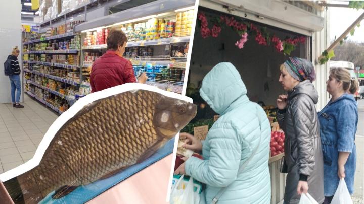 Рыбный конфуз, грязь и томатный баттл: сравниваем самарские рынки с гипермаркетами