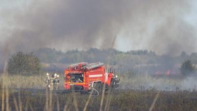 Рядом с «Мегамагом» начался ландшафтный пожар: рассказываем подробности в режиме онлайн
