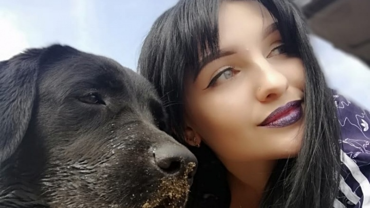 «Такого ужаса не видела никогда»: в Волгограде ветеринар без обследования усыпила молодого лабрадора