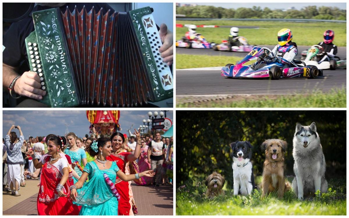 Выходные в Нижнем Новгороде: День города, «Русские крылья» и собаки со всей России