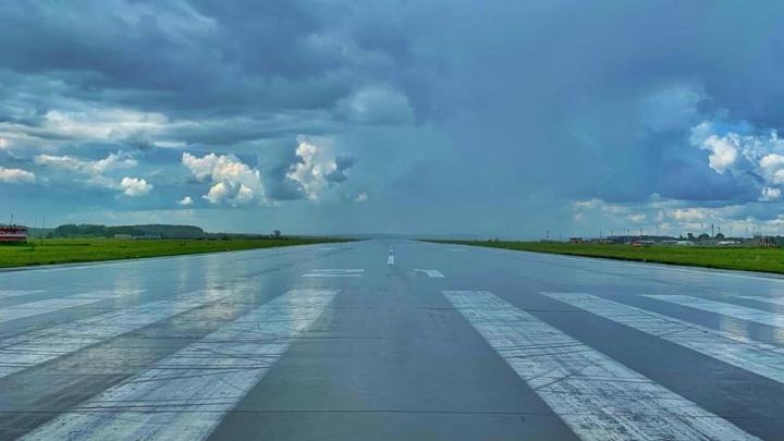В двигатель самолета «Уральских авиалиний» попали птицы. А как от них спасаются в аэропорту Перми?