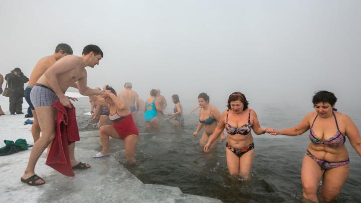 Морж получил переохлаждение при попытке уплыть по холодному Енисею с Пашенного