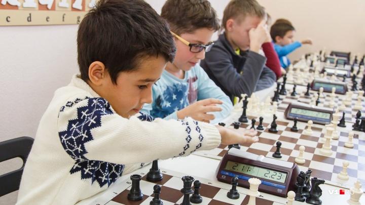 Заставят задуматься: волгоградец изобрел новые правила для шахмат