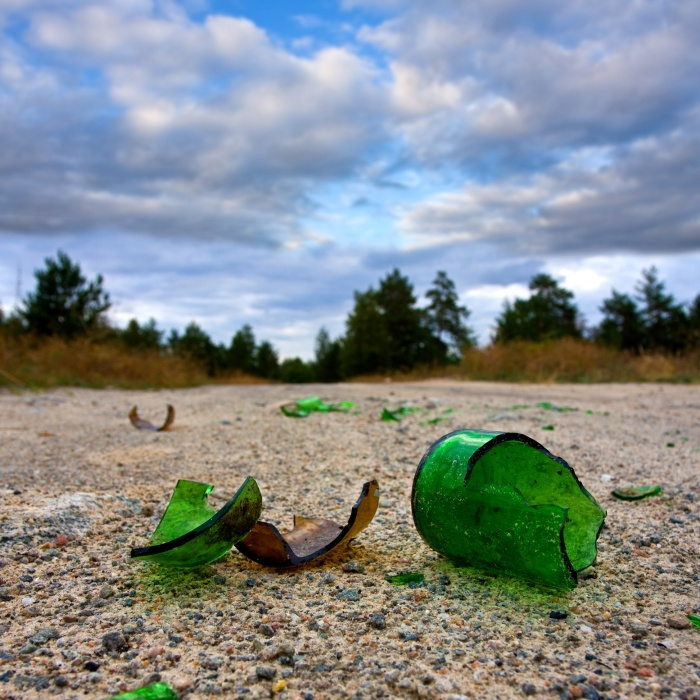 Кемеровчане пожаловались в прокуратуру на заваленный мусором Рудничный бор