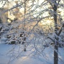 Синоптики предупредили о похолодании в Челябинской областидо -29°C