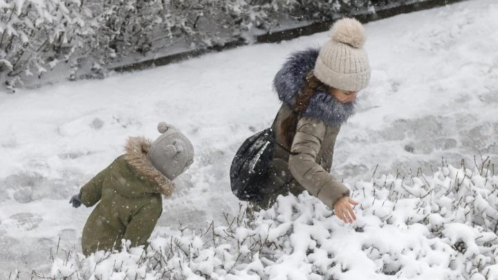 Селфи на фоне заснеженных деревьев: волгоградцы радуются сильному снегопаду
