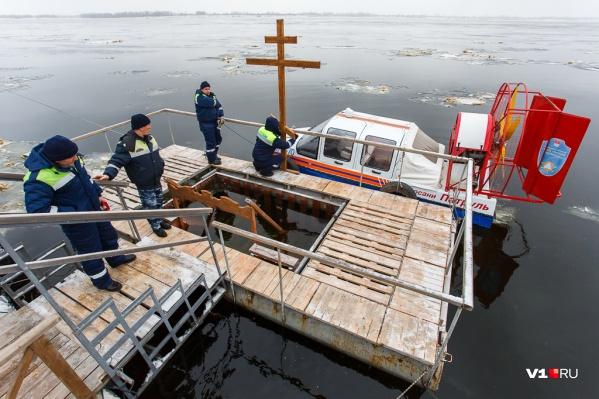 В этом году вода показалась моржам не ледяной, а просто холодной