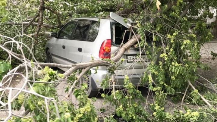 Спасатели предупредили об опасной погоде в воскресенье в Свердловской области