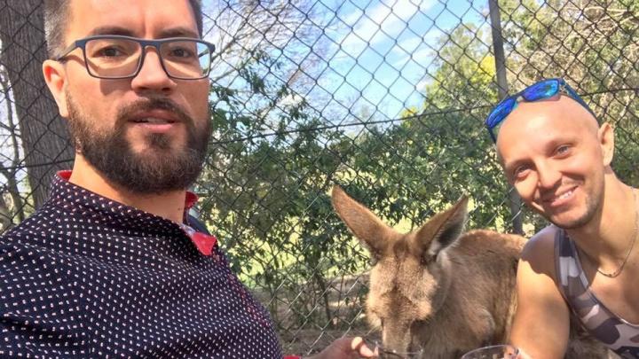 Напоили кенгуру: в Австралии начали продавать новосибирский квас