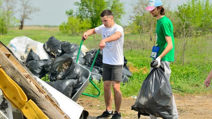 «Поедем на юга»: волгоградцы соберутся в команды, чтобы убрать мусор в трех районах города