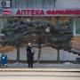 «Закрывали вывеску»: в центре Челябинска срезали макушки голубых елей. Что теперь будет с деревьями