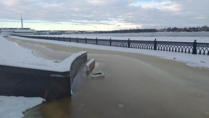 В Ярославле уровень воды приближается к критической отметке