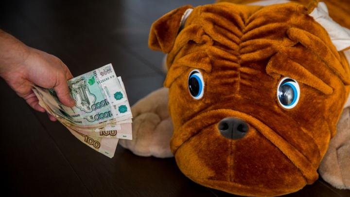 25 тысяч на четверых: Новосибирская область просела в рейтинге по благосостоянию семей