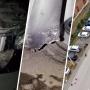 В Таганроге хозяин машины, бампер которого отгрызли бездомные собаки, хочет получить компенсацию