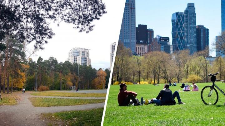 Как превратить стадион в Зеленой Роще в большой газон в Центральном парке: колонка урбаниста