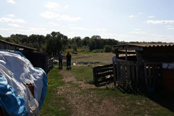 Волонтеры планируют прочесывать густой лес рядом с домом пропавшей девушки