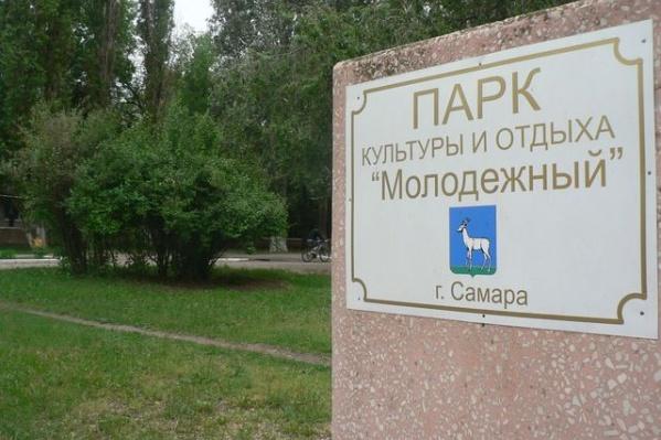 Одна из возможных площадок строительства — парк Молодежный