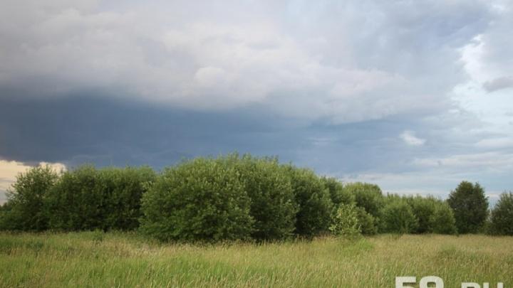 Грозы и штормовой ветер: МЧС предупредило жителей Прикамья об ухудшении погоды