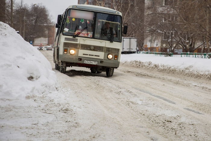 По маршруту будут ездить 6 автобусов