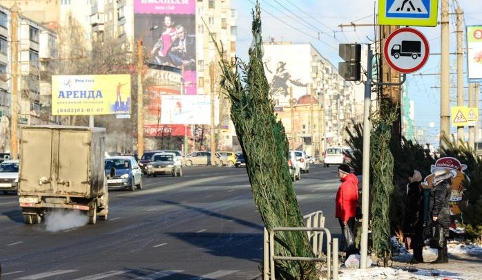 В мэрии утвердили места для продажи ёлок в Челябинске. Смотрим на 74.RU карту базаров