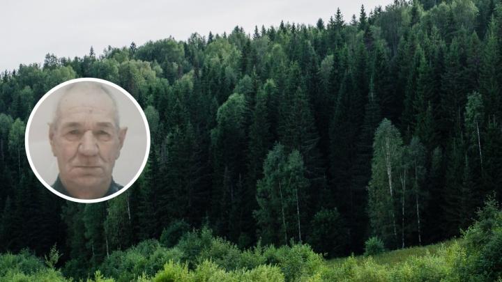 В Прикамье ищут 78-летнего пенсионера, нуждающегося в медицинской помощи
