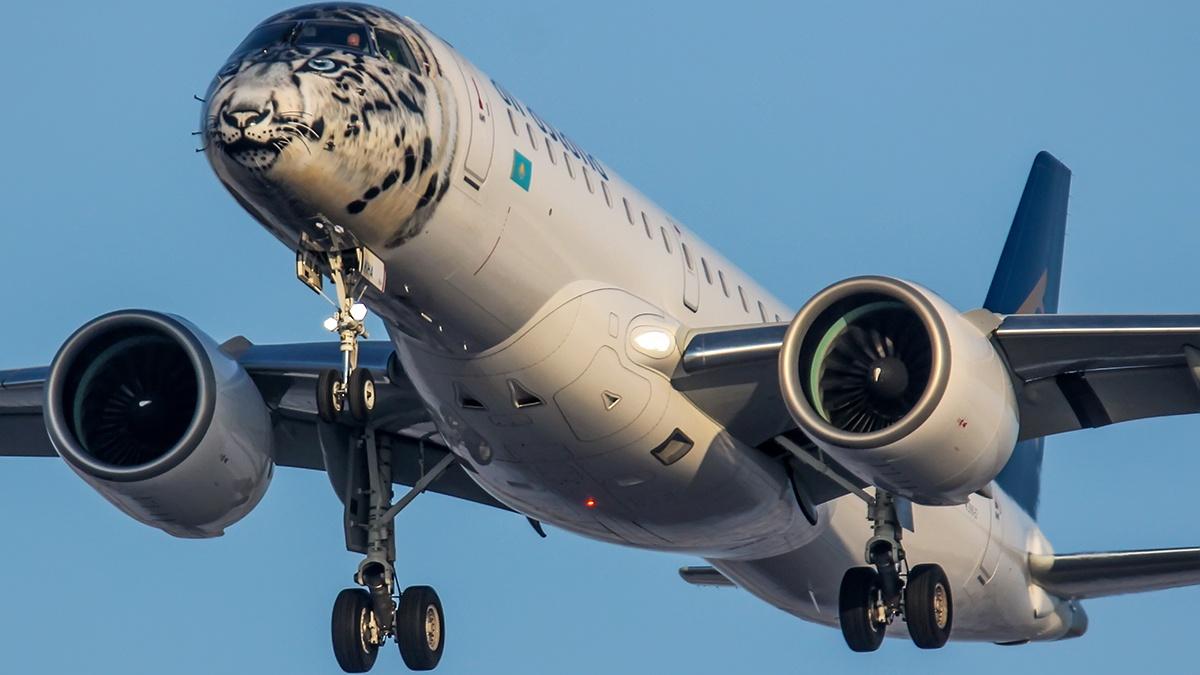 Авиакомпания поместила cнежного барса на ливрею самолёта, чтобы привлечь внимание к исчезновению этих животных