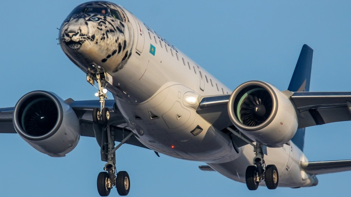 Над Новосибирском пролетел самолёт с мордой снежного барса на носу