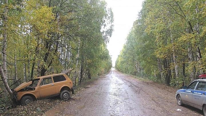 Пьяный, без прав и с поддельными госномерами: в Башкирии водитель «Нивы» протаранил березу