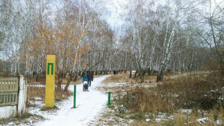Свято место: жителей посёлка под Челябинском рассорил проект храма в парке