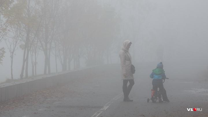 В Волгограде потеплеет до+7 ºС
