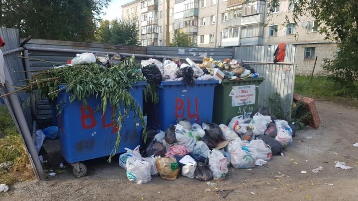 В Кургане обоснованный тариф за вывоз мусора установят к 20 декабря