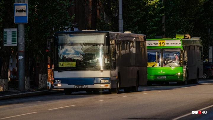 В центре Перми на две недели часть автобусов поменяет маршруты