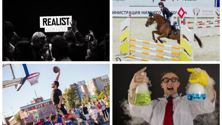 Выходные в Нижнем Новгороде: с лошадками, веб-сериалами и праздником спорта