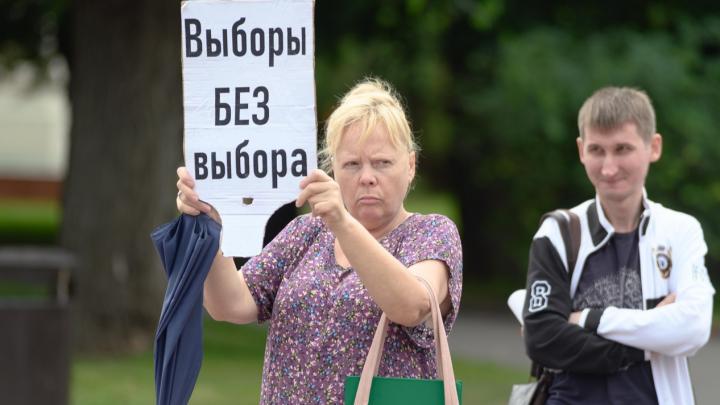 Все против всех и пёсики: смотрим, как прошел пикет солидарности в Волгограде