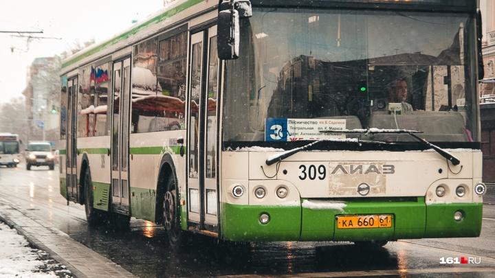 Замгубернатора посоветовал ростовским перевозчикам самим переучивать своих водителей