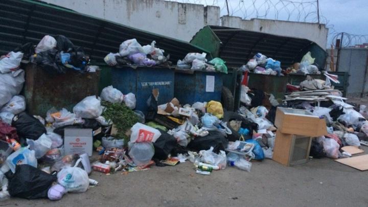 Храните мусор дома