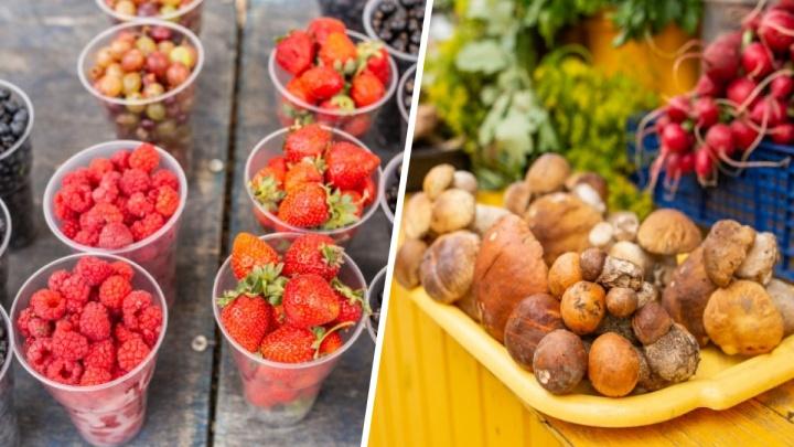«Где ты такие в лесу найдёшь?»: смотрим цены на грибы и ягоды в Ярославле