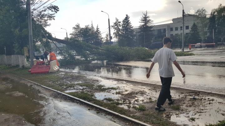 Что натворила стихия: деревья в Самаре падали на машины и провода